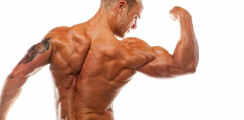 Slabeste si construieste masa musculara de calitate