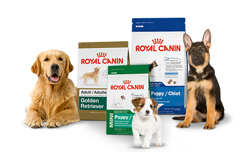 royal canin petmart