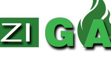 instalatii-gpl-Bizigaz-logo
