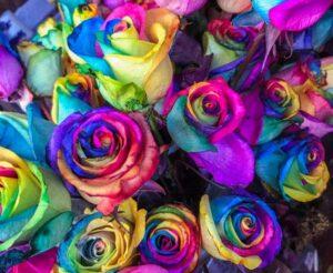 florarie-online-bucuresti4
